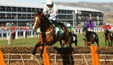 Champion Hurdle Latest plus News and Odds from the 2018 Festival